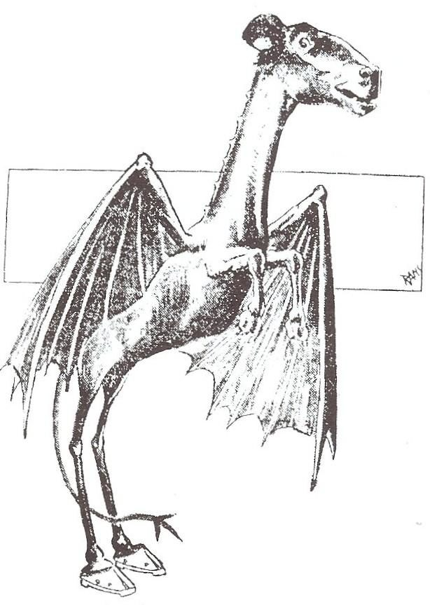 New Jersey - The Jersey Devil