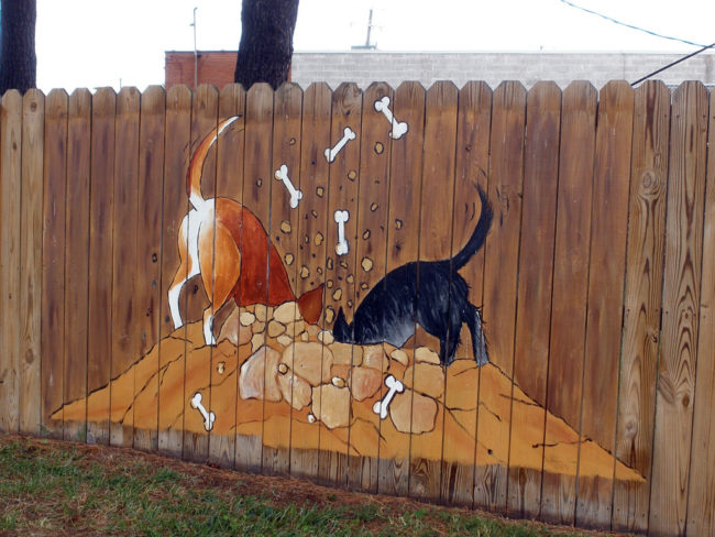 Express your style by painting a fun mural on your fence.