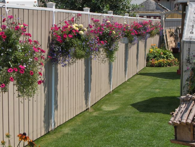 You can also cover your fence with hanging planters.