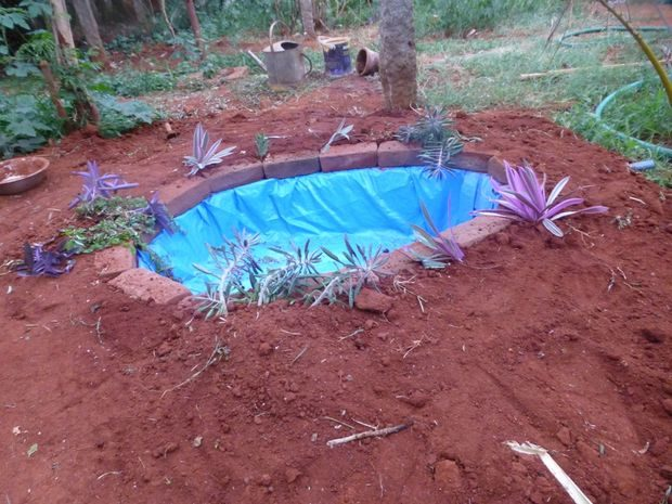This man proved that it 39 s not hard to build your own fish for Build your own koi pond