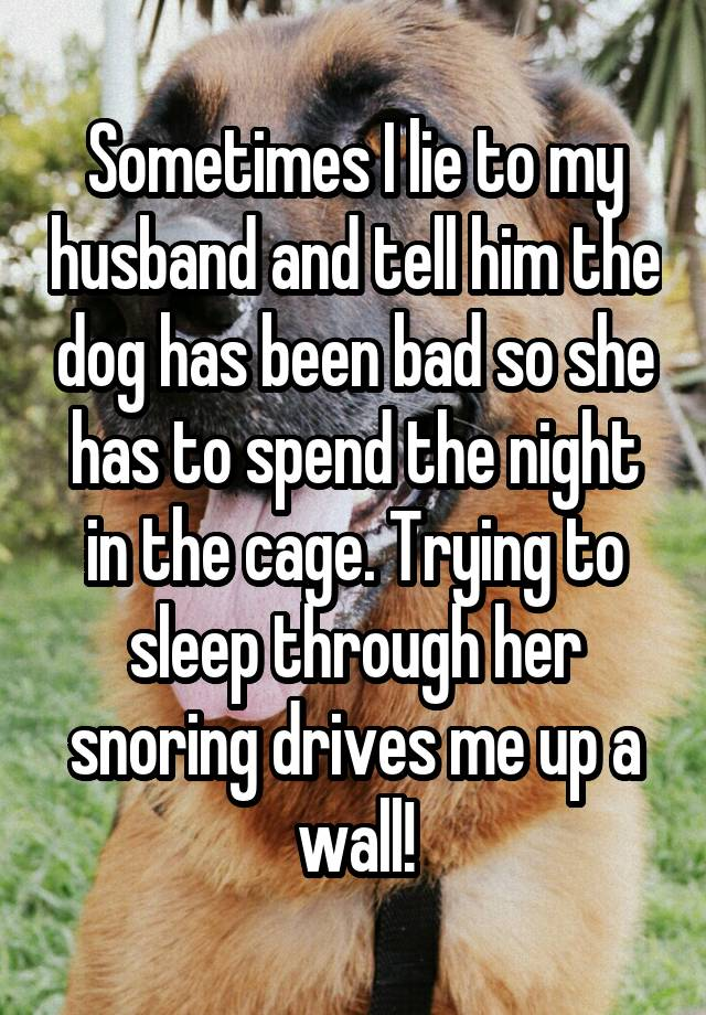 Sometimes I lie to my husband and tell him the dog has been bad so she has to spend the night in the cage. Trying to sleep through her snoring drives me up a wall!