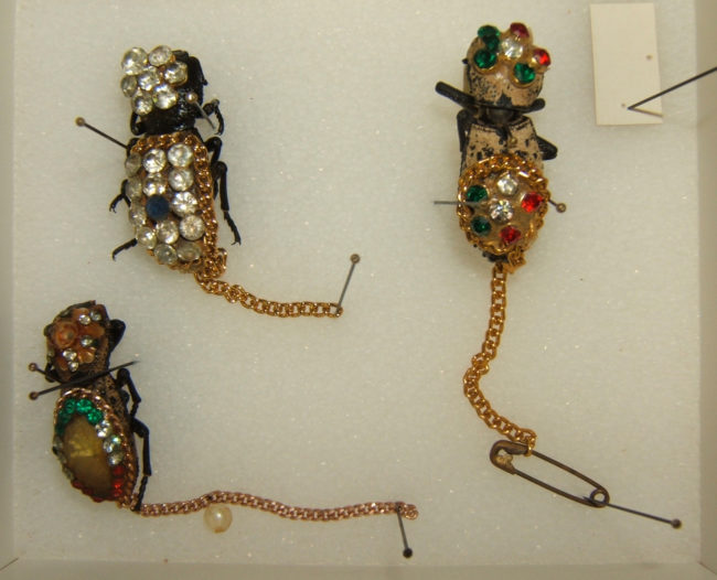 The people who buy them pin the chains to their clothing, allowing the beetles to crawl around and attract attention.