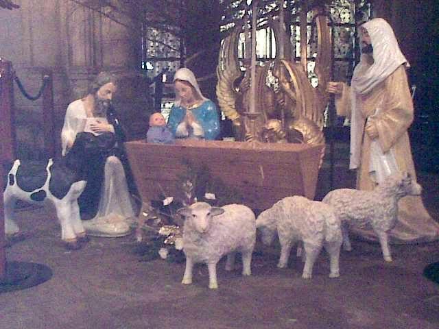 Baby Jesus was born on December 25.