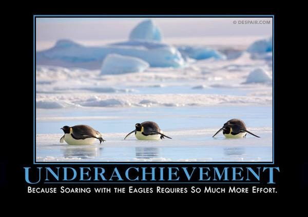"It's not like effort always <a href=""https://despair.com/collections/demotivators/products/underachievement-penguin"" target=""_blank"">pays off</a>, anyway."