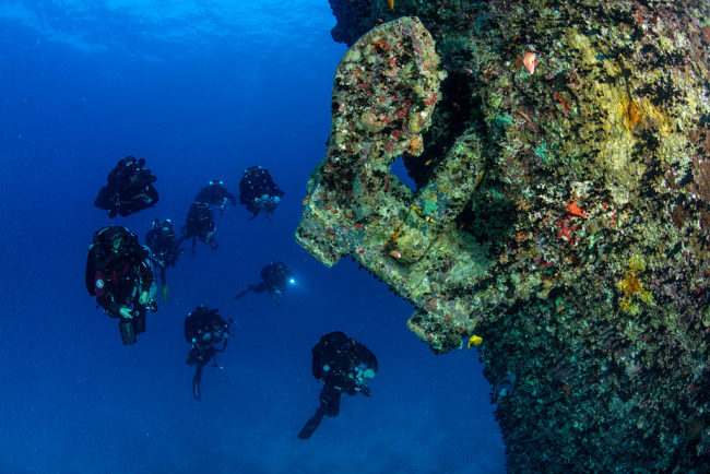 Others, like the SS Thistlegorm in the Red Sea, are world-famous diving locations.
