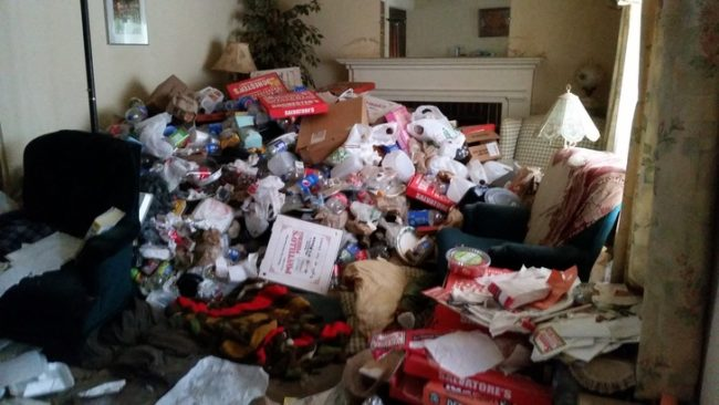 The hoarder who lived in this house really loved pizza, so the living room was filled with boxes.