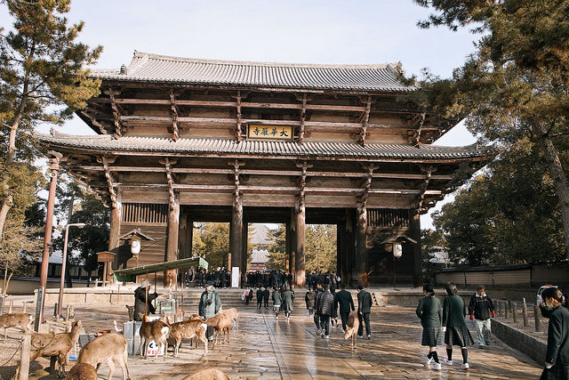 It might surprise you to learn that Nara, Japan, isn't known for its breathtaking architecture.