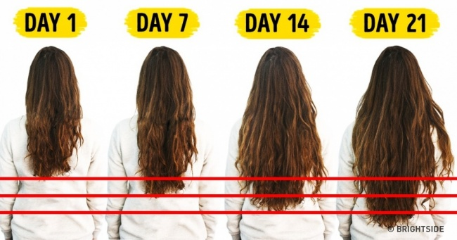 7Foods You Need toAccelerate Hair Growth