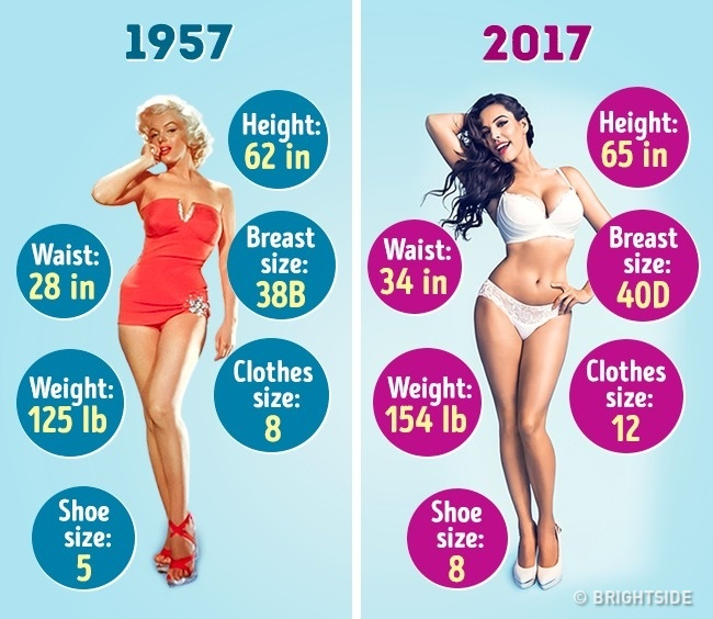 How the Ideal Female Figure Has Changed in the Last 60 ...