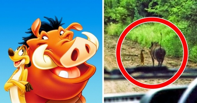 18Pictures Showing That Disney Characters Would Fare Quite Well inOur World